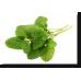 Φιλοξένη βιολογικό τσάι βοτάνων  (σακουλάκι)– Ισορροπία